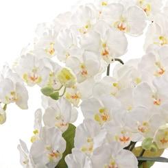 光触媒(造花)
