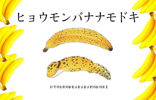 ヒョウモンバナナモドキ