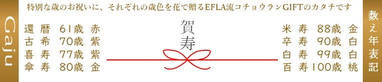 長寿のお祝い賀寿の花ギフト胡蝶蘭還暦古希喜寿傘寿米寿卒寿