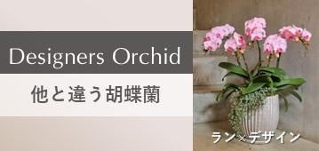 おしゃれでスタイリッシュなデザイン胡蝶蘭ならエフラ