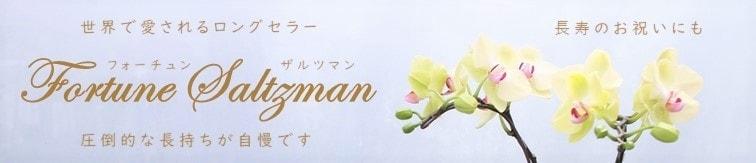 賀寿(長寿のお祝い)還暦喜寿傘寿米寿白寿百寿に長持ちする黄色い胡蝶蘭