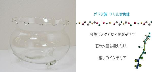 フリル金魚鉢大ガラス製涼しげなきんぎょ鉢