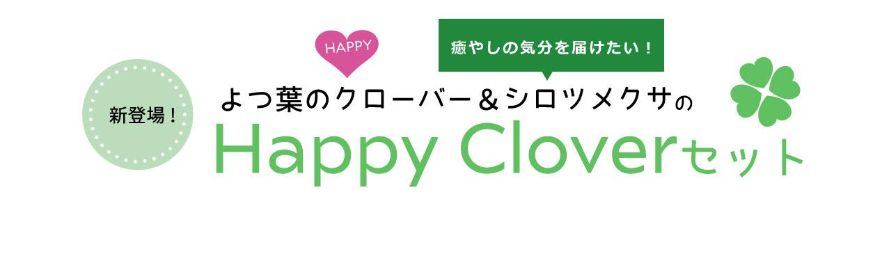 新登場!よつ葉のクローバー&シロツメクサのHappy Cloverセット