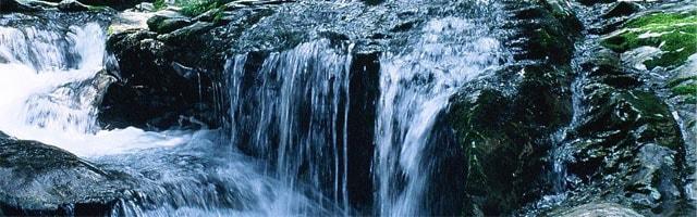 原生林の残る秘境・大台ヶ原から湧き出た宮川