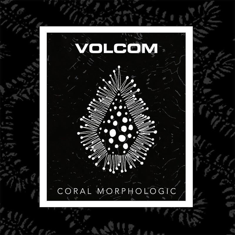 VOLCOM 2021 SPRING