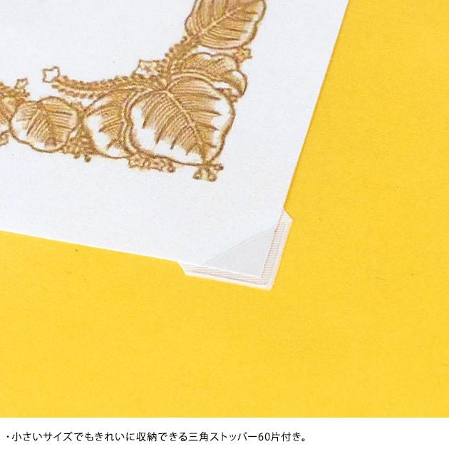 レイメイ 賞状ファイル 大B4版  賞状ファイル 作品 お絵描き 通知表 思い出 整理 収納 通信簿 スッキリ プログラム