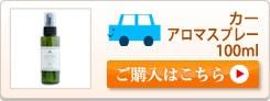 車スプレー100ml