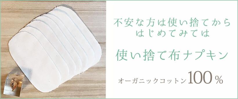 レメディガーデン使い捨て布ナプキンセット