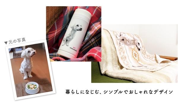 元の犬の写真と商品イメージ|暮らしになじむ、シンプルでおしゃれなデザイン