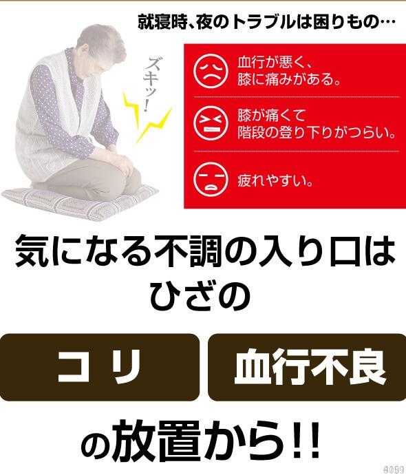 マグネッカーDX ひざ用(B)