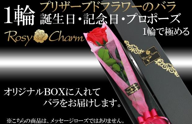 誕生日・記念日・プロポーズに1輪のバラのプリザーブドフラワー