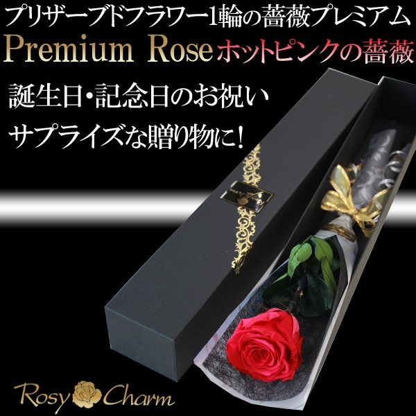誕生日・記念日・プロポーズ 1本薔薇