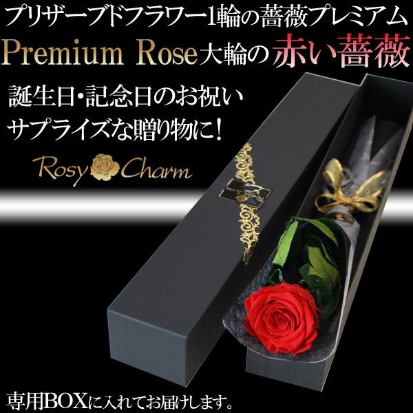 誕生日・記念日・プロポーズ 赤い薔薇