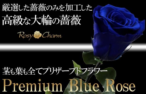 枯れない花 青いバラ