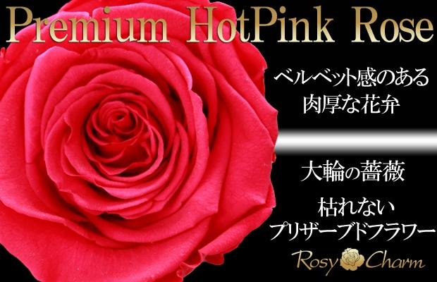 ホットピンクのバラ プリザーブドフラワー