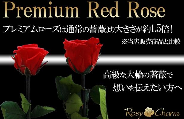 大輪の赤い薔薇 プリザーブドフラワー