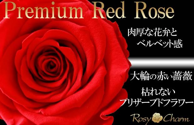 赤いバラ プリザーブドフラワー