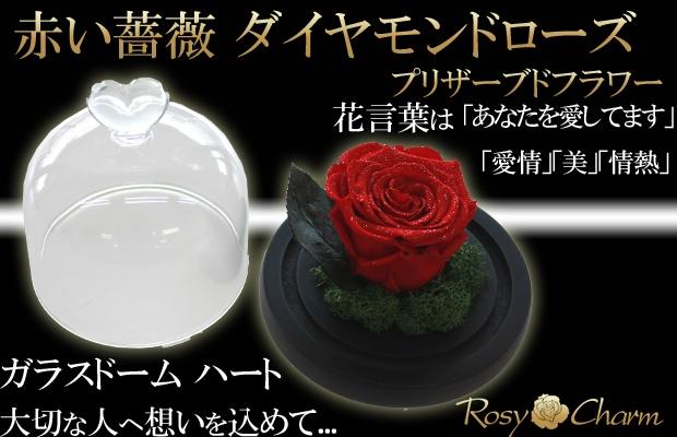 ガラスドーム 赤い薔薇 プリザーブドフラワー