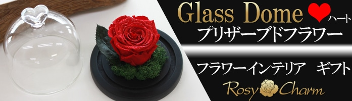 ガラスドーム 美女と野獣 バラ