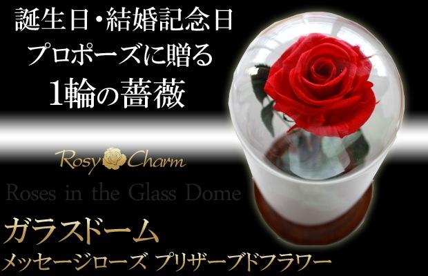 ガラスドーム 1本のバラ プリザーブドフラワー
