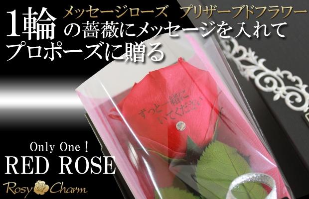 記念日に贈る赤バラ1本