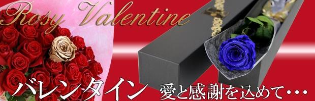 バレンタインデーに贈るバラ width=