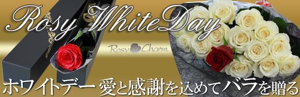 ホワイトデーに贈るバラ