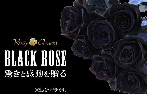 黒いバラ 花束