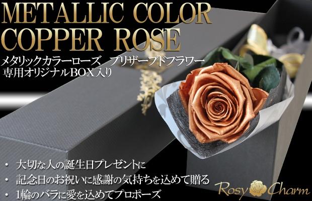 銅色のバラ 1輪