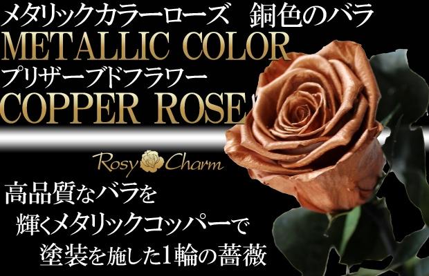 枯れない銅色の薔薇