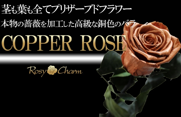 銅色 薔薇 全てプリザーブドフラワー
