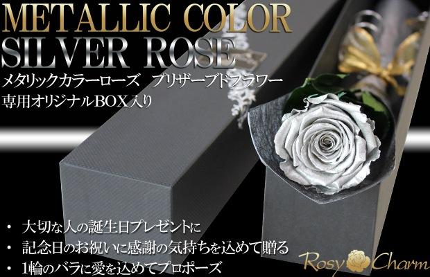 銀色のバラ 1輪