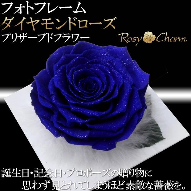 大輪の青い薔薇 ダイヤモンドローズ