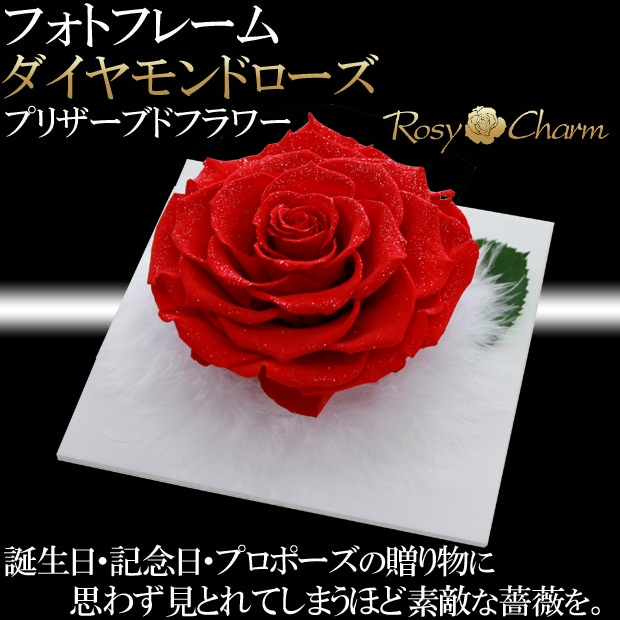 大輪の薔薇ダイヤモンドローズ