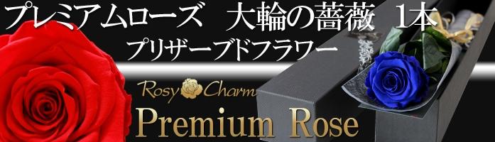 プレミアムローズ 大輪の薔薇1本