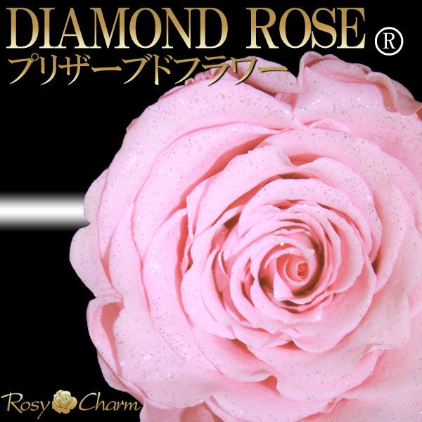 ダイヤモンドローズ ピンクの薔薇