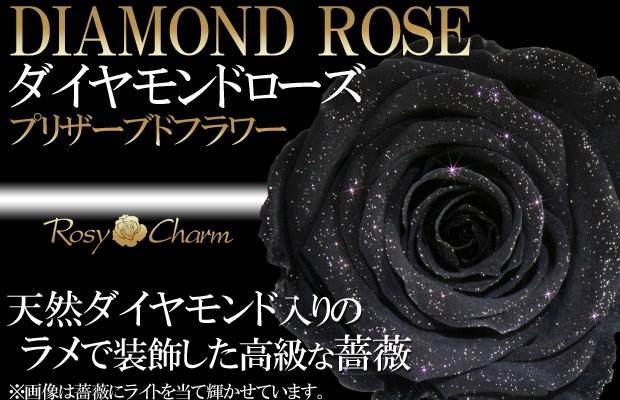 ダイヤモンドローズ 黒色のバラ