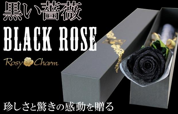ダイヤモンドローズ ブラック 特別な贈り物