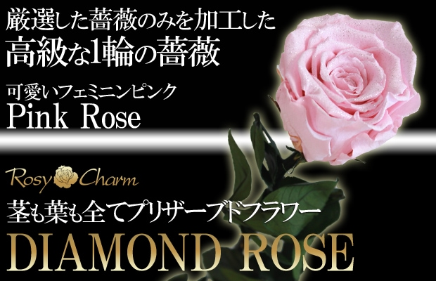 ピンクのバラ高級プリザーブドフラワー