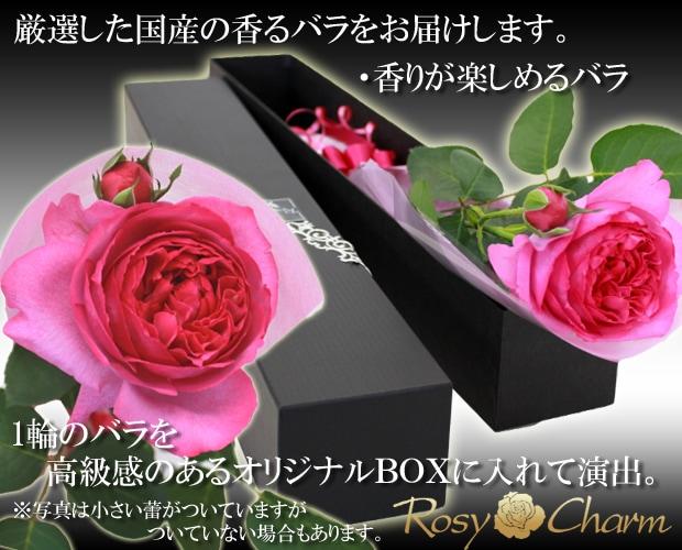 1輪のバラ BOX入りギフト