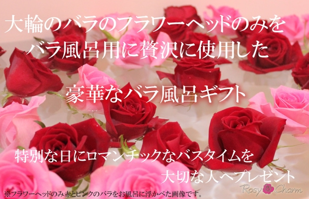 バラ風呂 バラの花首をお風呂に浮かべる