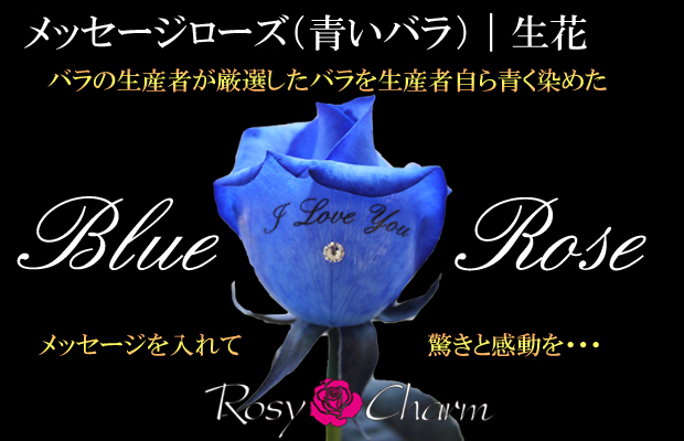 青いバラにメッセージ入り 1本