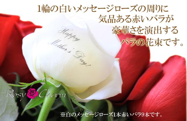 母の日に贈る薔薇