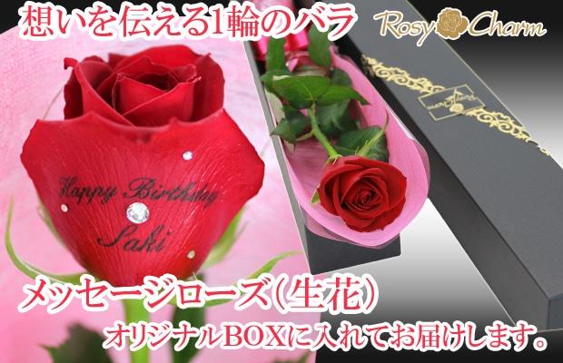 メッセージローズ赤いバラ1輪