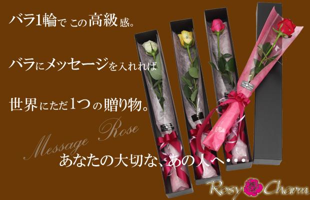 メッセージローズ 1輪のバラ