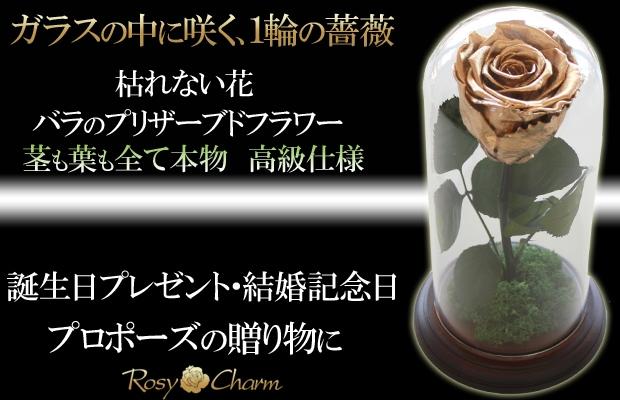 ガラスドーム入り 薔薇のプリザーブドフラワー