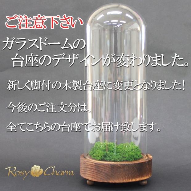 ガラスドーム デザイン変更のお知らせ