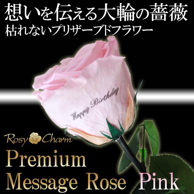大輪の薔薇 メッセージローズ ピンク