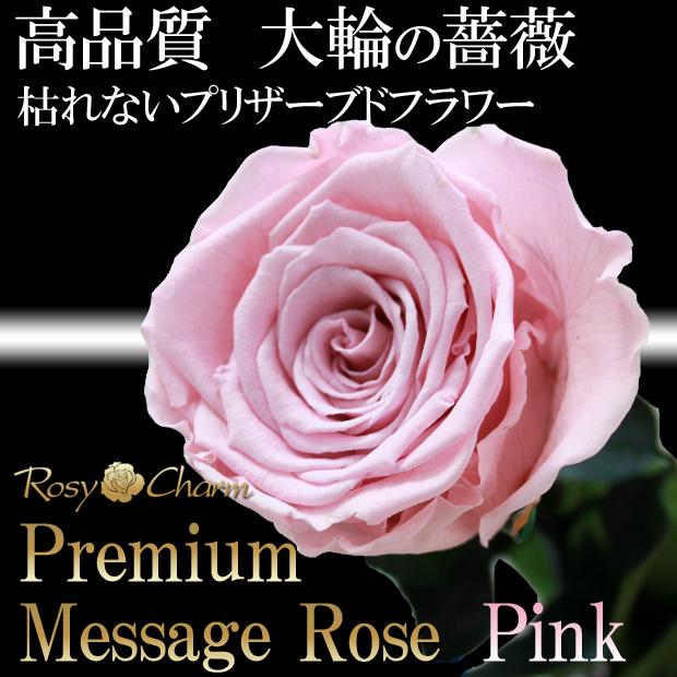 大輪ピンクのバラ1本ギフト