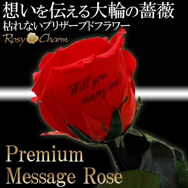 大輪の薔薇メッセージ入り